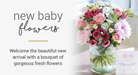 Bloom Wild Homepage Image